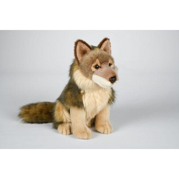 Farkas nagy - 30 cm